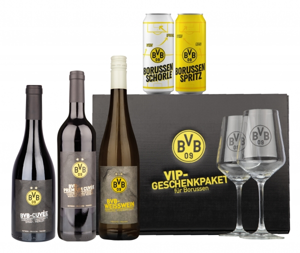 BVB VIP Paket
